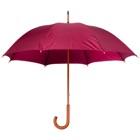 Parapluie Gentel-102724