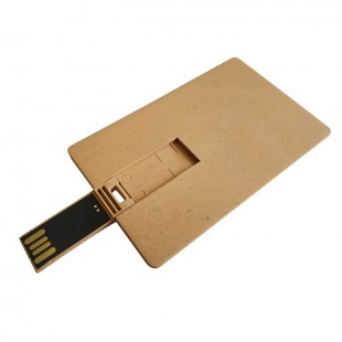 Clé USB carte Marron-106664