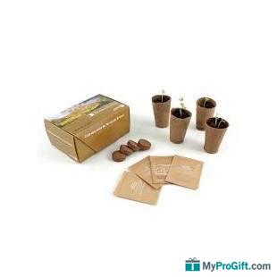 Coffret carton 4 pots biodégradables avec graines-102071